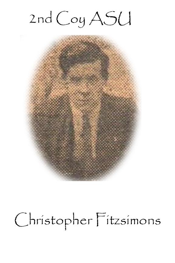 Christopher Fitzsimons Custom House Burning